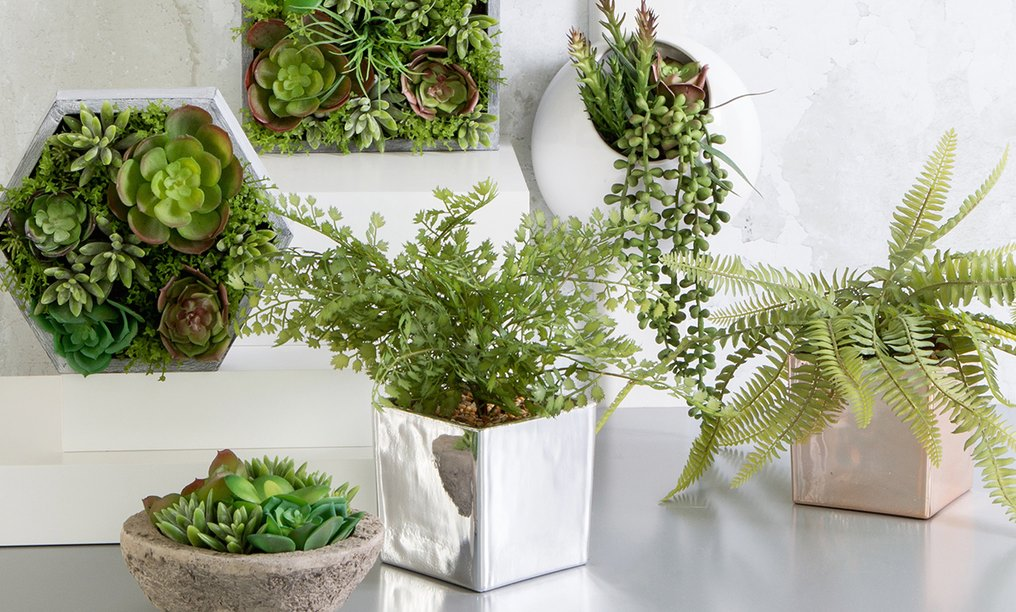 best way to hang plants indoors